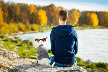 Hundehalterhaftpflicht Kosten