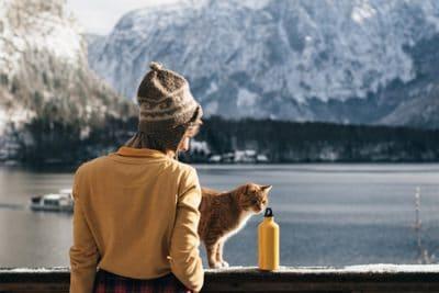 Katzen OP Versicherung